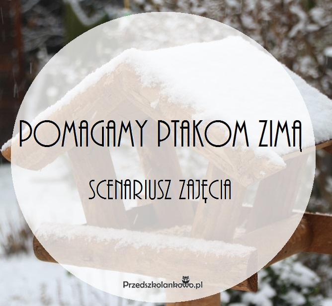 Pomagamy Ptakom Zimą Scenariusz Zajęcia Przedszkolankowo