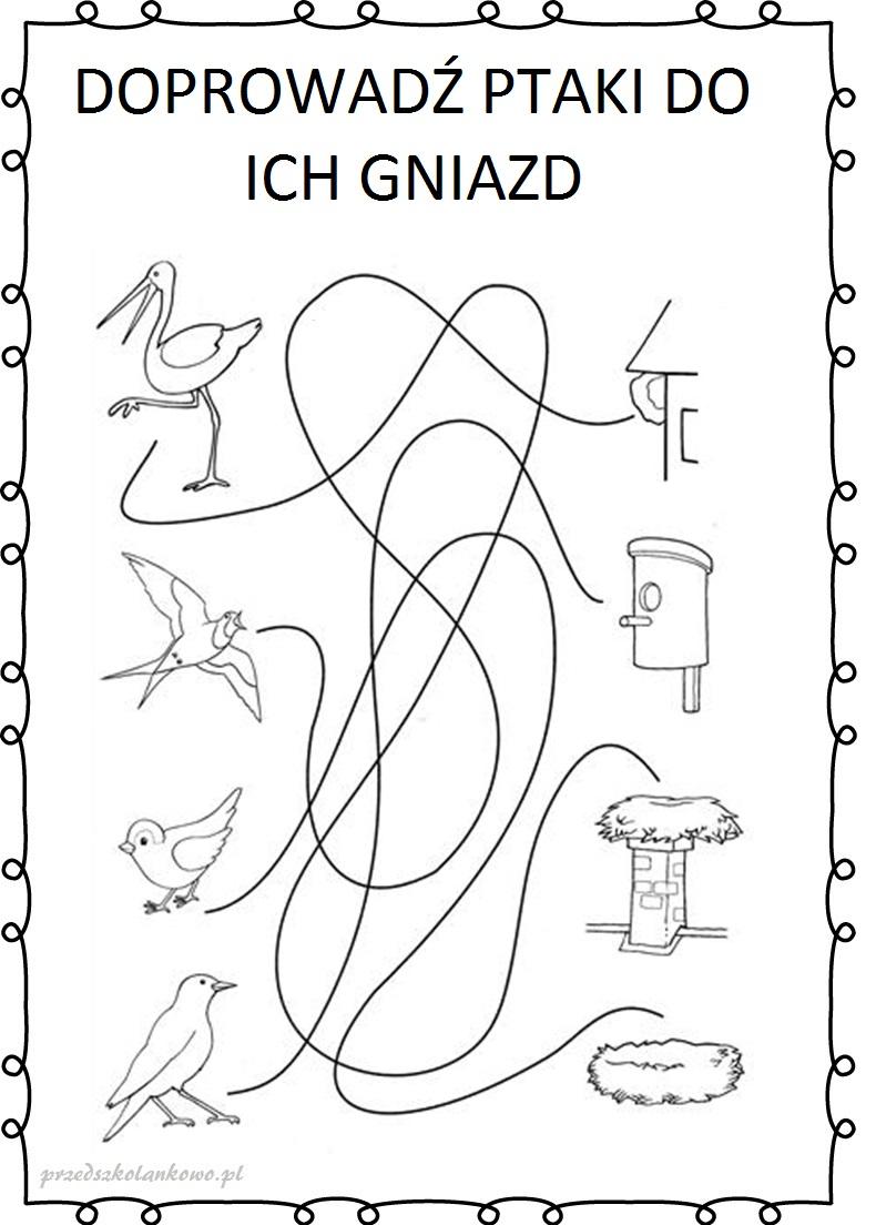Znalezione obrazy dla zapytania: ptaki do gniazd karta pracy