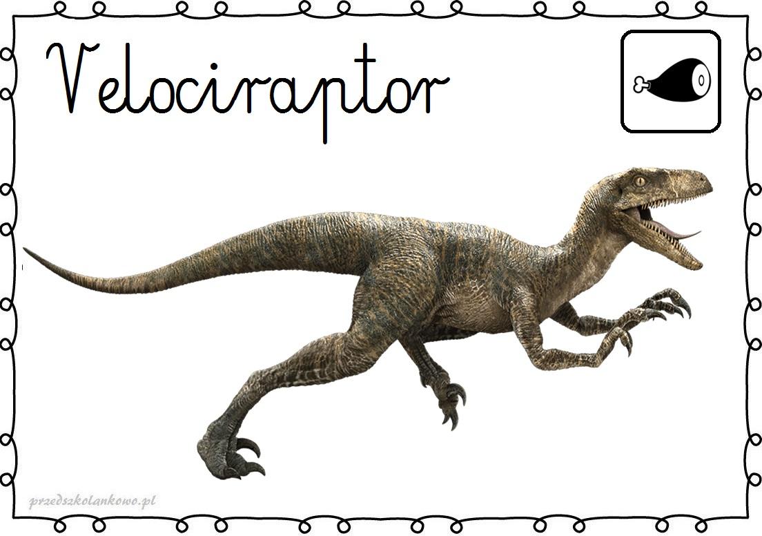 Dinozaury plansze przedszkolankowo - Dinosaure de jurassic park ...