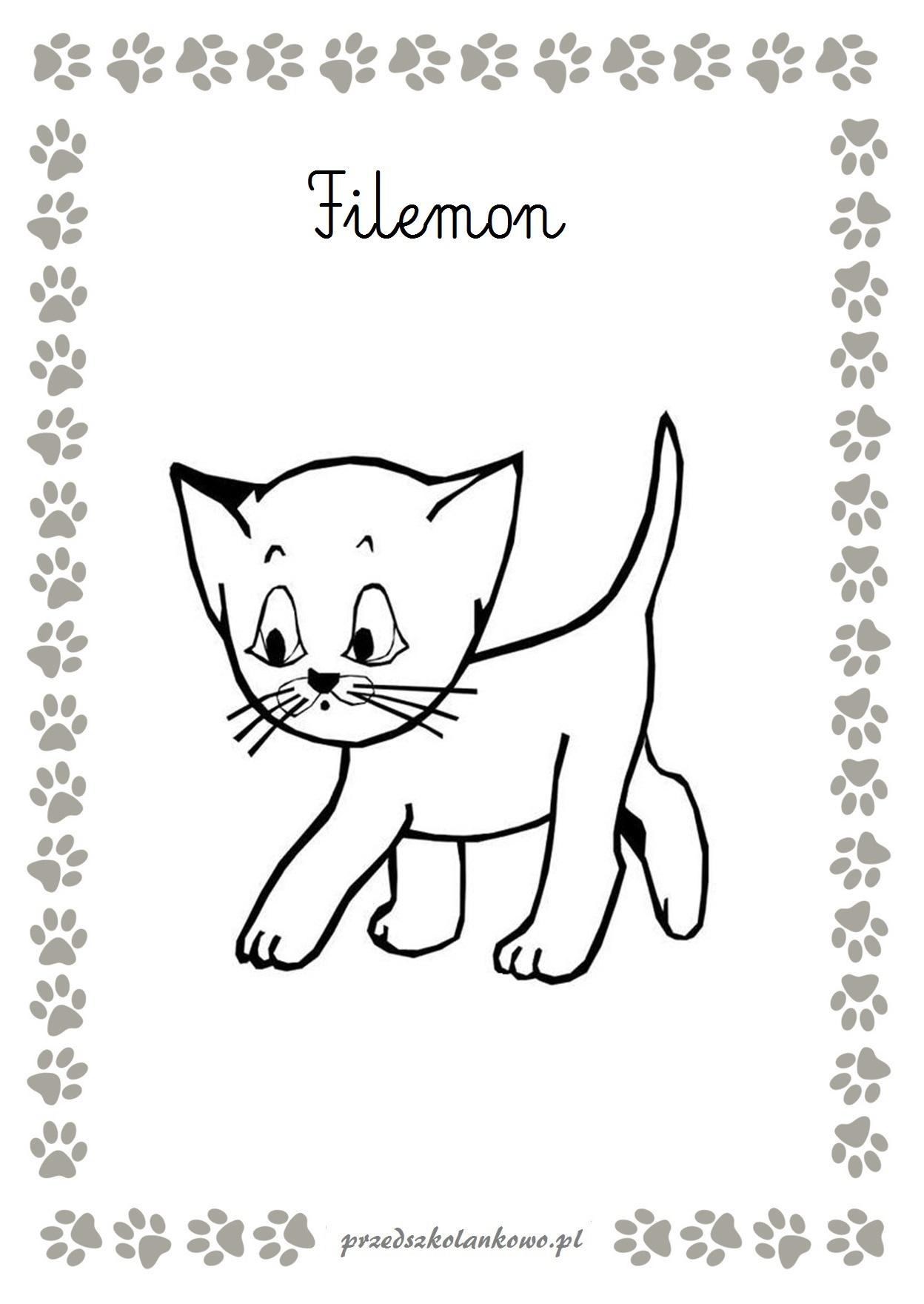 Kocie Kolorowanki Przedszkolankowo